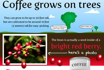 image with facts about coffee